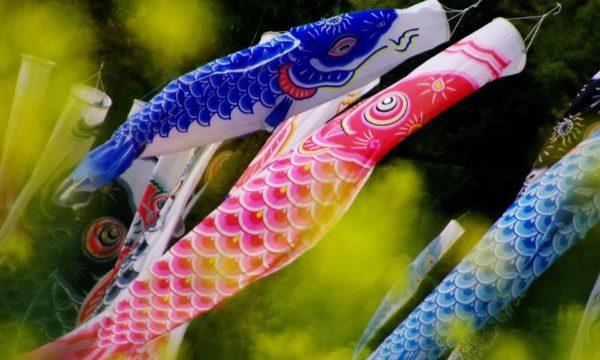 【初節句】鯉のぼりの値段はいくらくらいが相場なの?